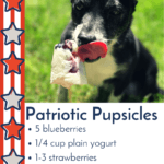 DIY Fourth Of July Dog Treat